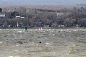quebec windsurfing